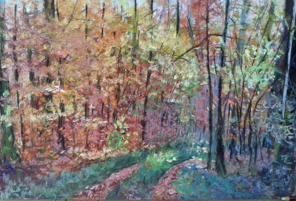 Wald nahe dem Bungsberg, Schönwalde Pastell 30 x 45