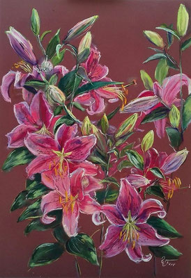 lilien 46 x  56 Pastell