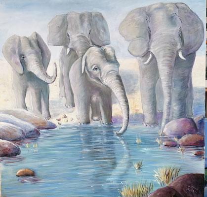 Elefantenfamilie, Öl   80 x 80