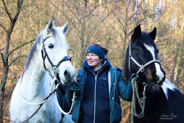 Ponyhof Sonnenschein Ponys