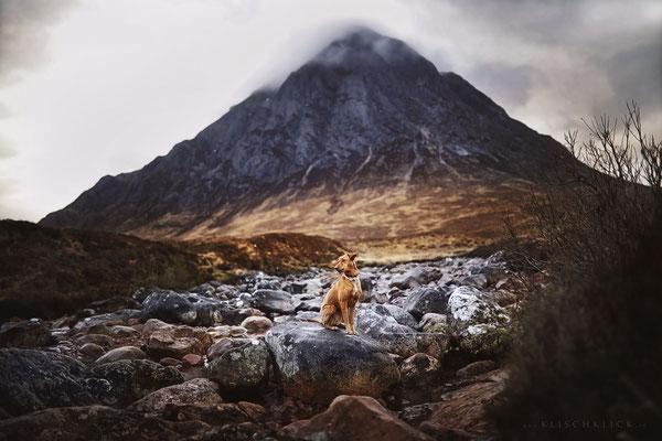 Roadtrip mit Hund Schottland Etive Mor Waterfall