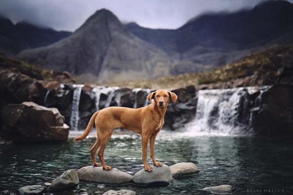 Roadtrip mit Hund Schottland Fairy Pools