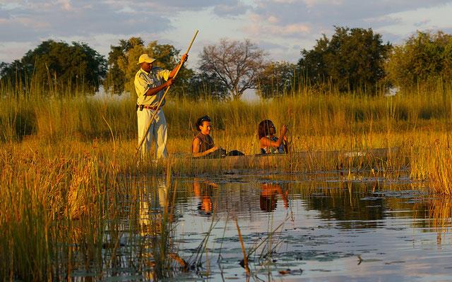Botswana Mokoroausflug