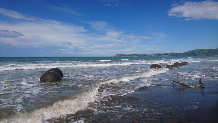 Moeraki Boulders, between Dunedin and Oamaru, NZ
