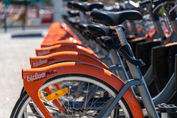 Nantes 10 - Vélo en location