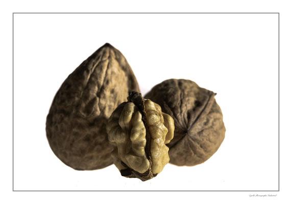 Photographie de noix sur fond blanc