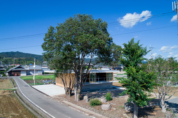 既存の大きな樹木は西日や台風から建物を守ります