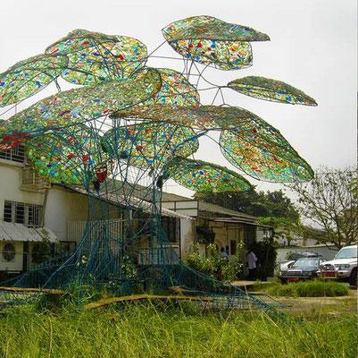 L'arbre a palabres  de Bonambappe situé au jardin du tombeau des rois Bell a Bonanjo par Frederic Keiff de France 2007
