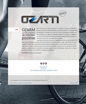Création du logotype et mise en ligne du site web.