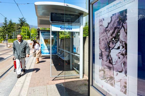 Participation à Urban Expo - Grenoble - 2014