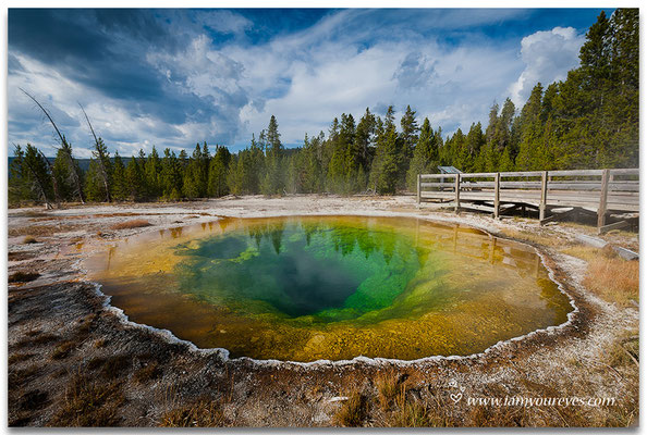 Morning Glory Pool, Upper Geyser Basin