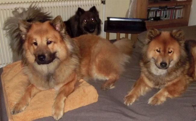 unsere werdende Mama mit ihren Gefährtinnen