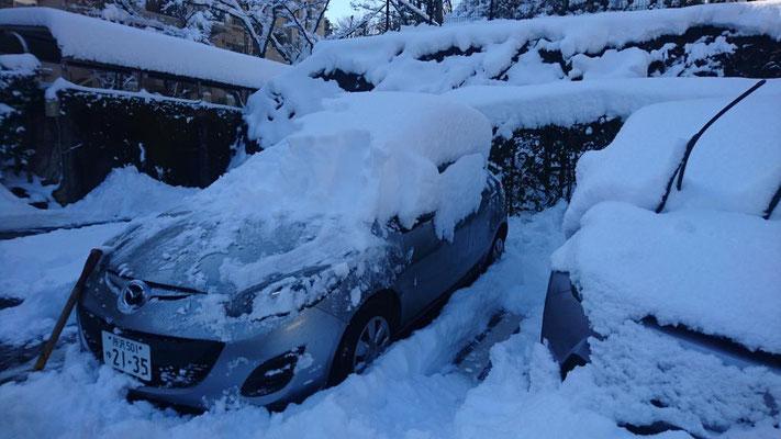 23日 山口地区では40cm近くの積雪