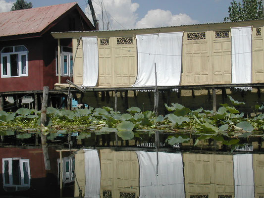le houseboat di Srinegar- Kashmir- India