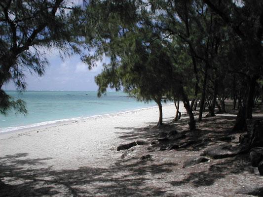 L'isola dei Cervi- Mauritius