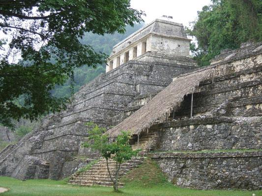 Messico- Tikal