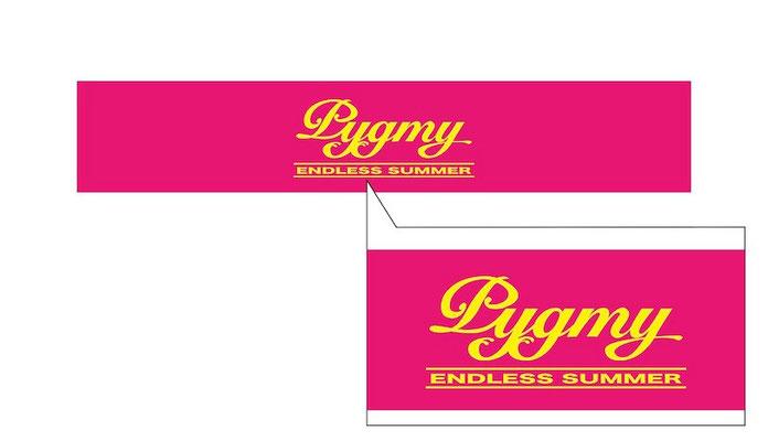 PYGMY タオル(2014)