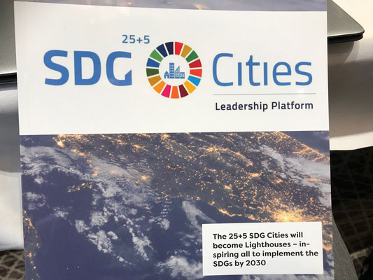 Discussion on SDG Cities
