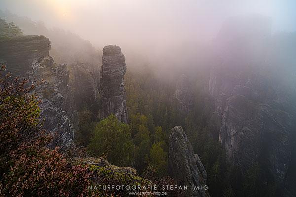 20201011-Herbst im Elbsadstein-8519