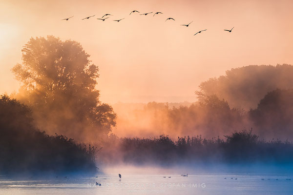 20120930-Misty Sunrise-3003423