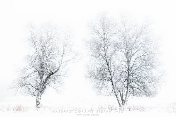 20201209-Winterlandschaft-8518805