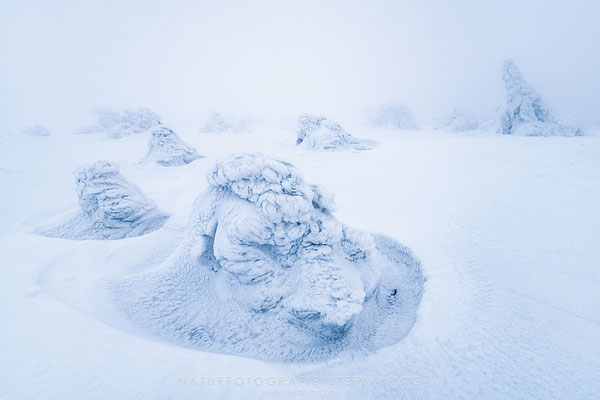 20190213-Winter auf dem Brocken-8503178