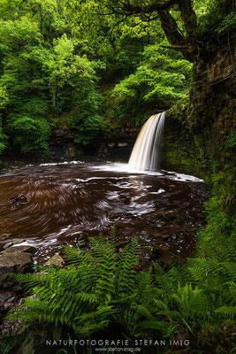 20190608-Sgwd Gwladys Wasserfall-8527857