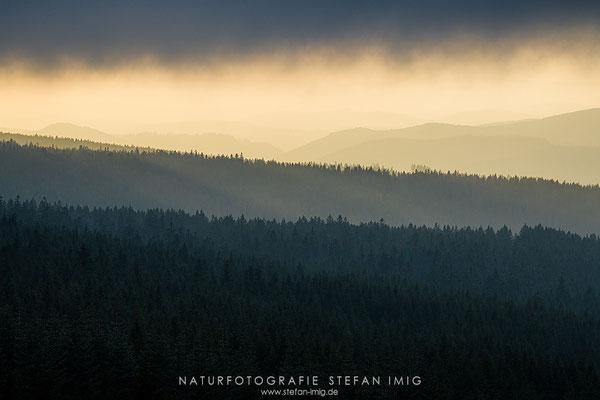 20200116-Winter im Harz-5182