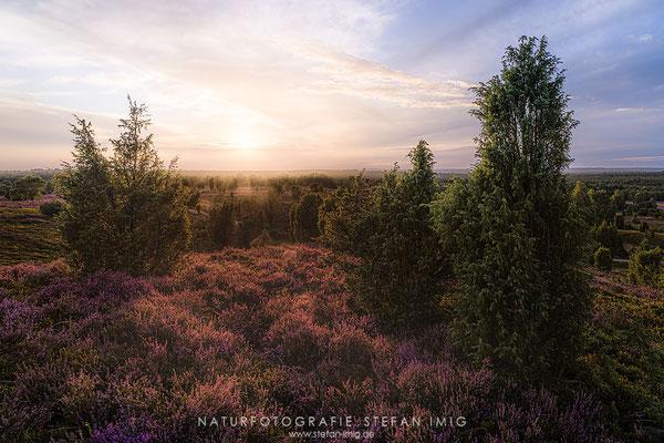 20200827-Sonnenuntergang in der Lueneburger Heide-