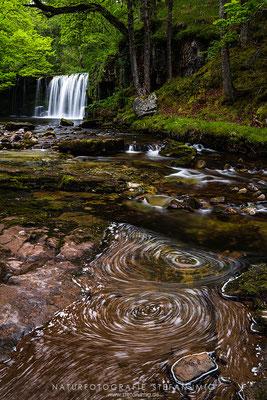 20190528-Wasserfall in den Brecon Beacons-8526622
