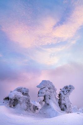 20190213-Winter auf dem Brocken-8503217