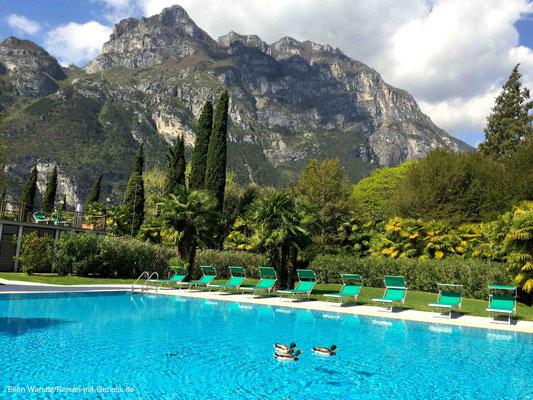 Früher Morgen im Park: Noch schwimmen die Enten im Hotel-Pool