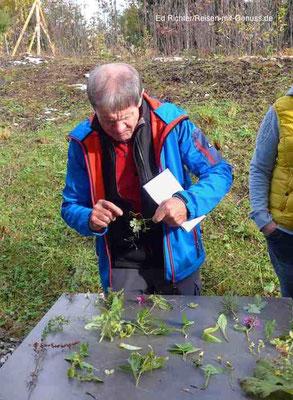 Kräuter und Blumen sind seine Leidenschaft: Bergführer Hans