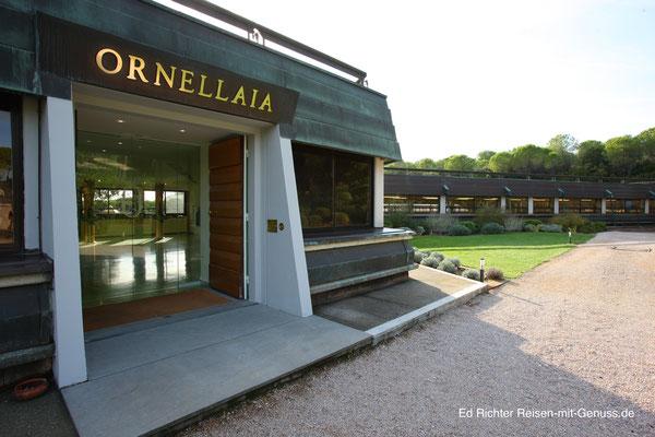 "Eingang ins Weingut ""Ornellaia"""