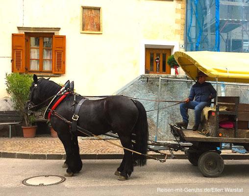 Gemütlich: Pferdewagen kutschieren die Gäste durchs Dorf Margreid.Es ist die Heimat des Weinguts Alois Lageder