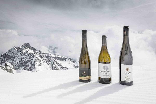 Wein verkosten auf 3000 Meter Höhe: ein besonderes Geschmackserlebnis