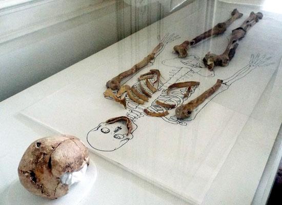 Les ossements de Nithard