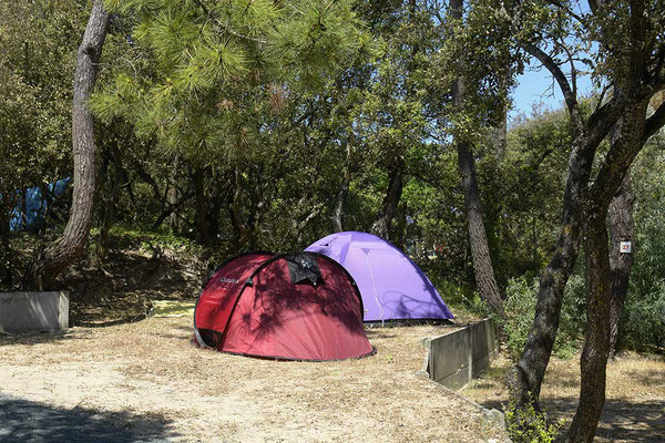 Emplacements tente camping les Pins Oléron