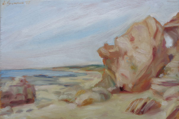 L'intruso, Dune di Campomarino, oil on wood, 20 x 30 cm, 2017