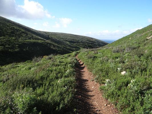 Estúdio de Corpo e Alma, Trilhos, Caminhadas, Natureza, Percurso pedestre, Almoinhas Velhas, Serra de Sintra, Montes e vales