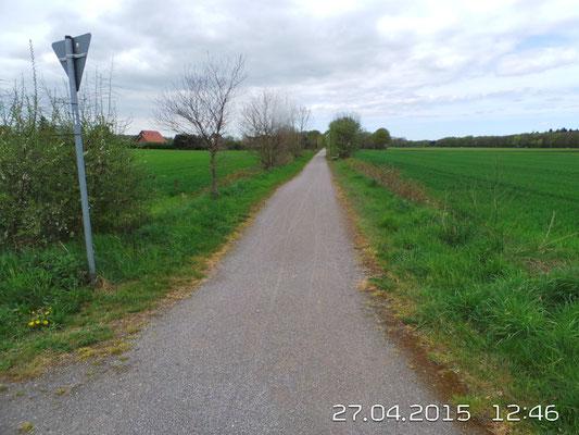 Radweg auf ehemaliger Bahntrasse - als möglicher Geometerpfad