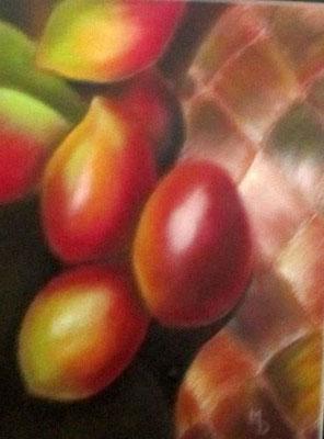 Du BOIS Succulent Pastel 31x41