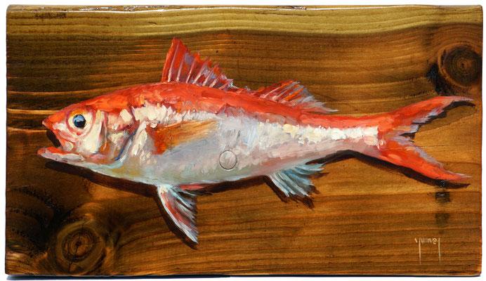 N°313 Eia ora (poisson vivant) 18,5x32 Huile sur bois