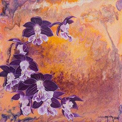 N°11 Orchidées en couronne 30x30 AST