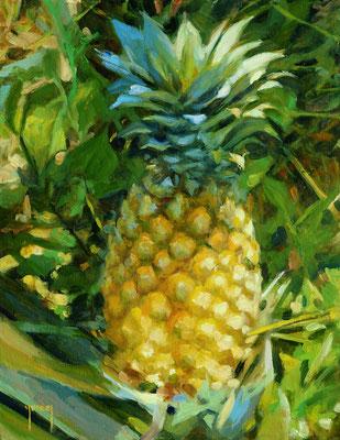 N°325 Ananas de Moorea 35x27 Huile sur toile