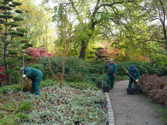 Japanischer Landschaftsgarten in Planten un Blomen | Reinhard Garber GbR