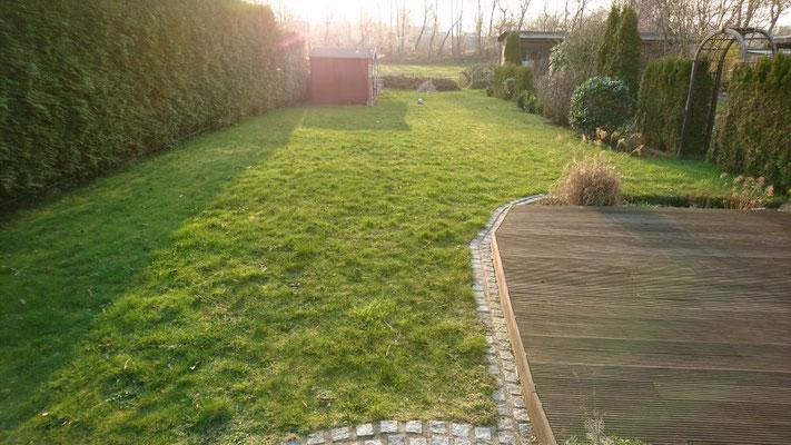 Vor der Umgestaltung | Garten- und Landschaftsbau Garber
