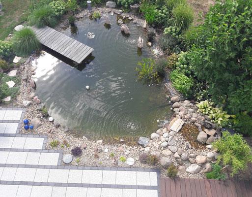 Teichansicht von oben | Garten- und Landschaftsbau Garber