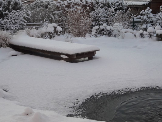 Teich im Winterkleid | Garten- und Landschaftsbau Garber