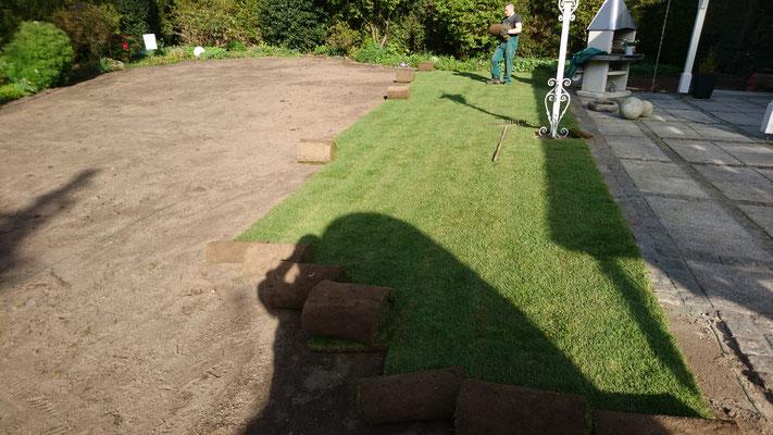Rollrasen Verlegung | Garten- und Landschaftsbau Garber